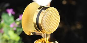 胜金杯麦克风专业级录音品质